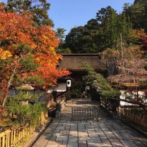 Tempel-Garten-Japan-13-1024x768_2