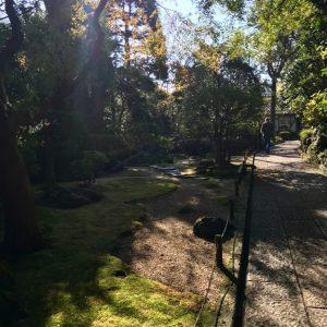 Tempel Garten Japan 9