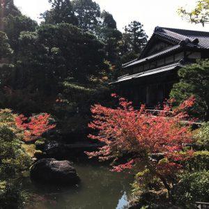 Tempel-Garten-Japan-9-1024x768_2